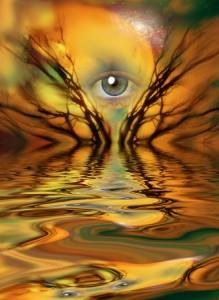 rebirth respiration consciente