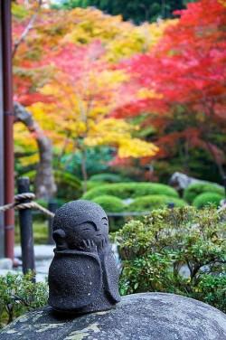 photo zen pour newsletters